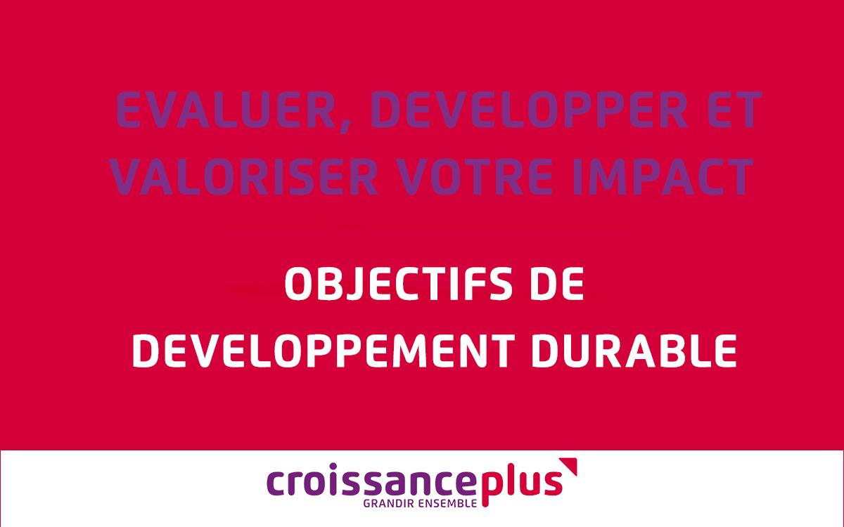 Evaluer, développer, évaluer votre impact – Les Objectifs de développement durable (ODD)