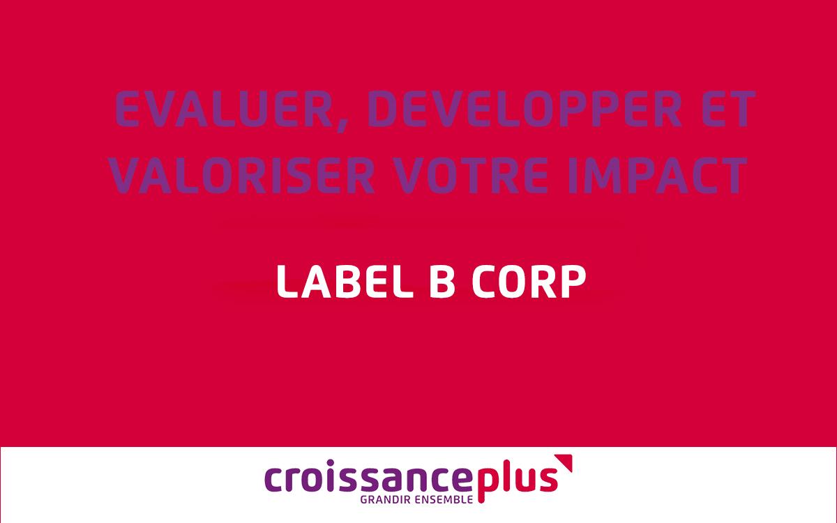 Evaluer, développer, valoriser votre impact ! – Label B Corp